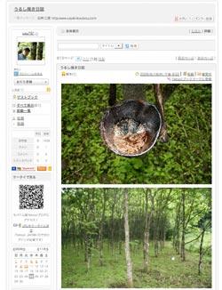 11_26_urusikaki_.jpg