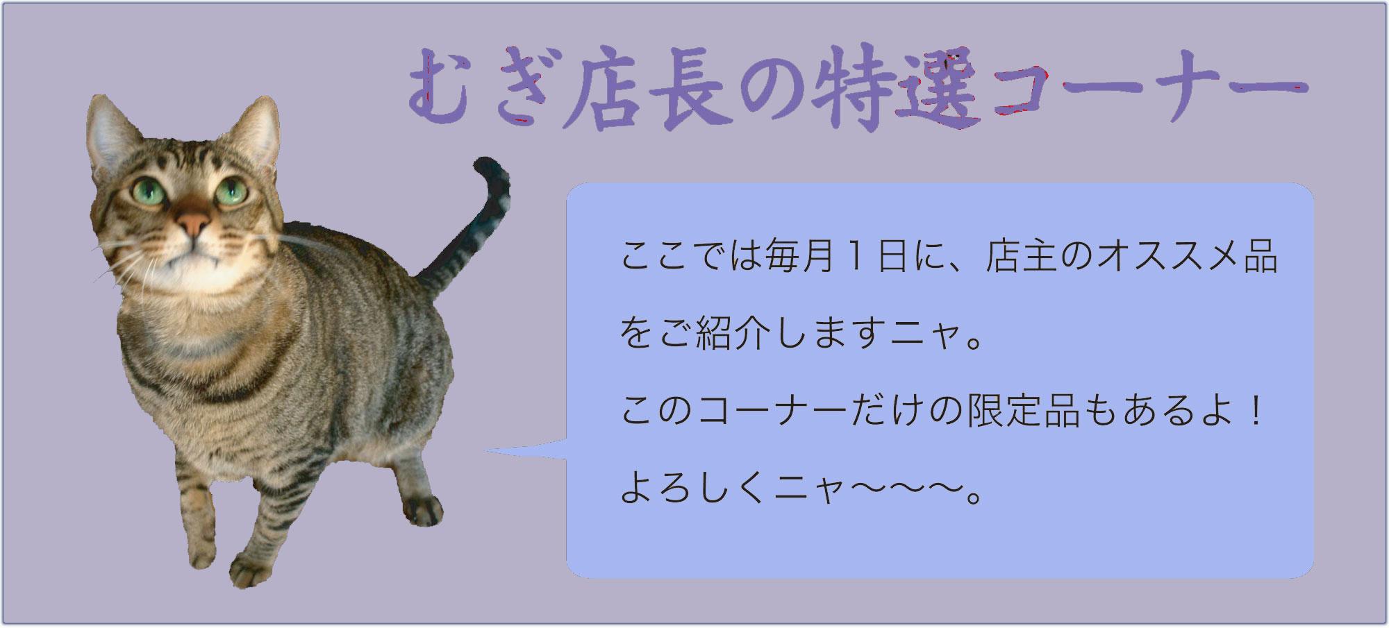 特選コーナータイトルup.jpg