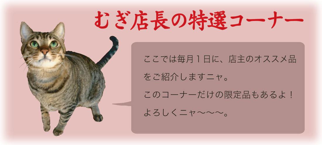 2月特選タイトル.jpg