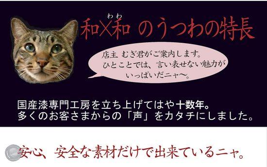 wawa_utuwa_tokutyou_2013.jpg